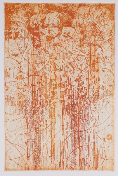 Etching, 9 x 16 inches, 2011